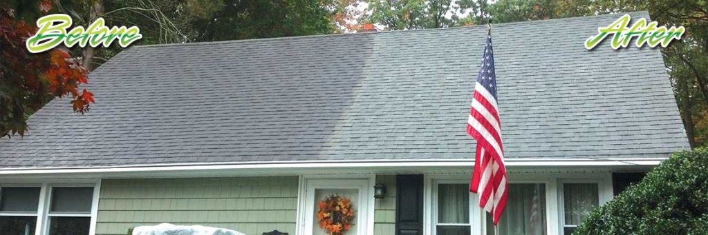 Roof Washing Bergenfield NJ