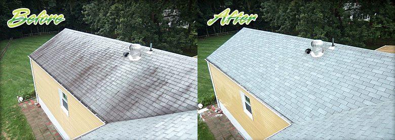 Bergen County NJ Roof Shampoo