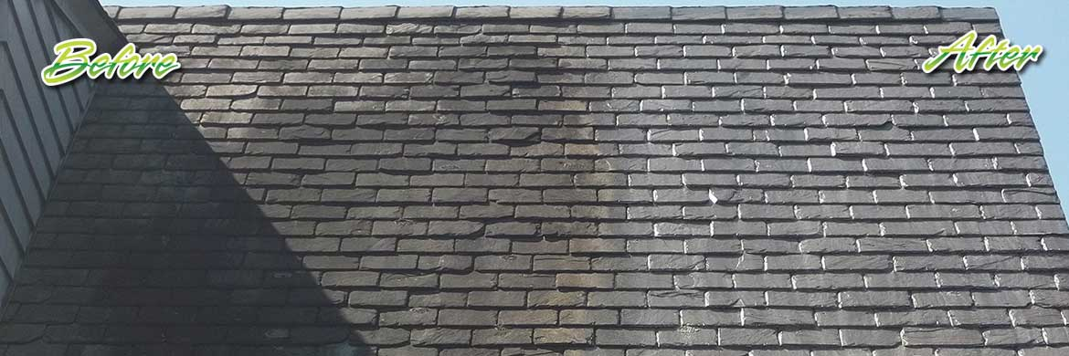 slate roof cleaning