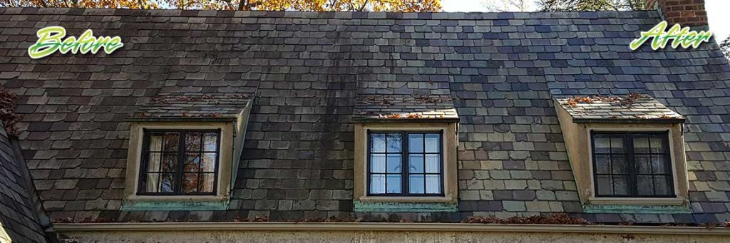 NJ Soft Wash roof cleaning